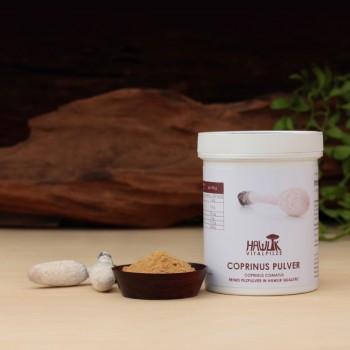 Polvere di Coprinus