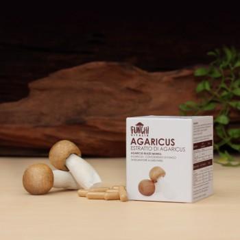 Estratto di Agaricus - Scatola convenienza (240 capsule)