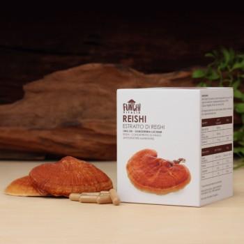 Estratto di Reishi (Ganoderma Lucidum) - Scatola convenienza (240 capsule)